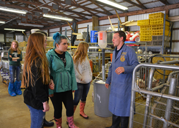 Students learning from an FFA teacher