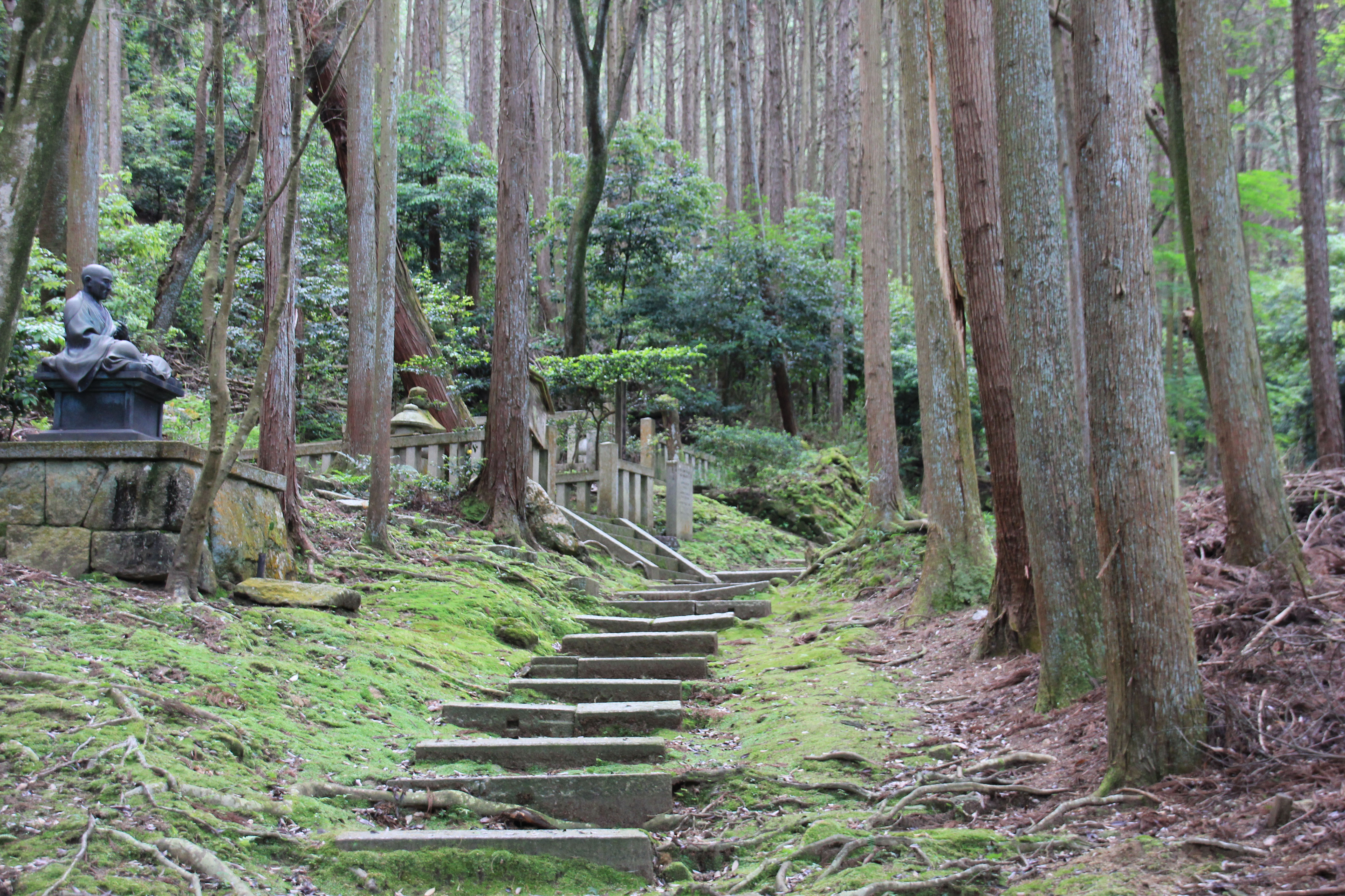 A beautiful scene of the landscapes of Japan