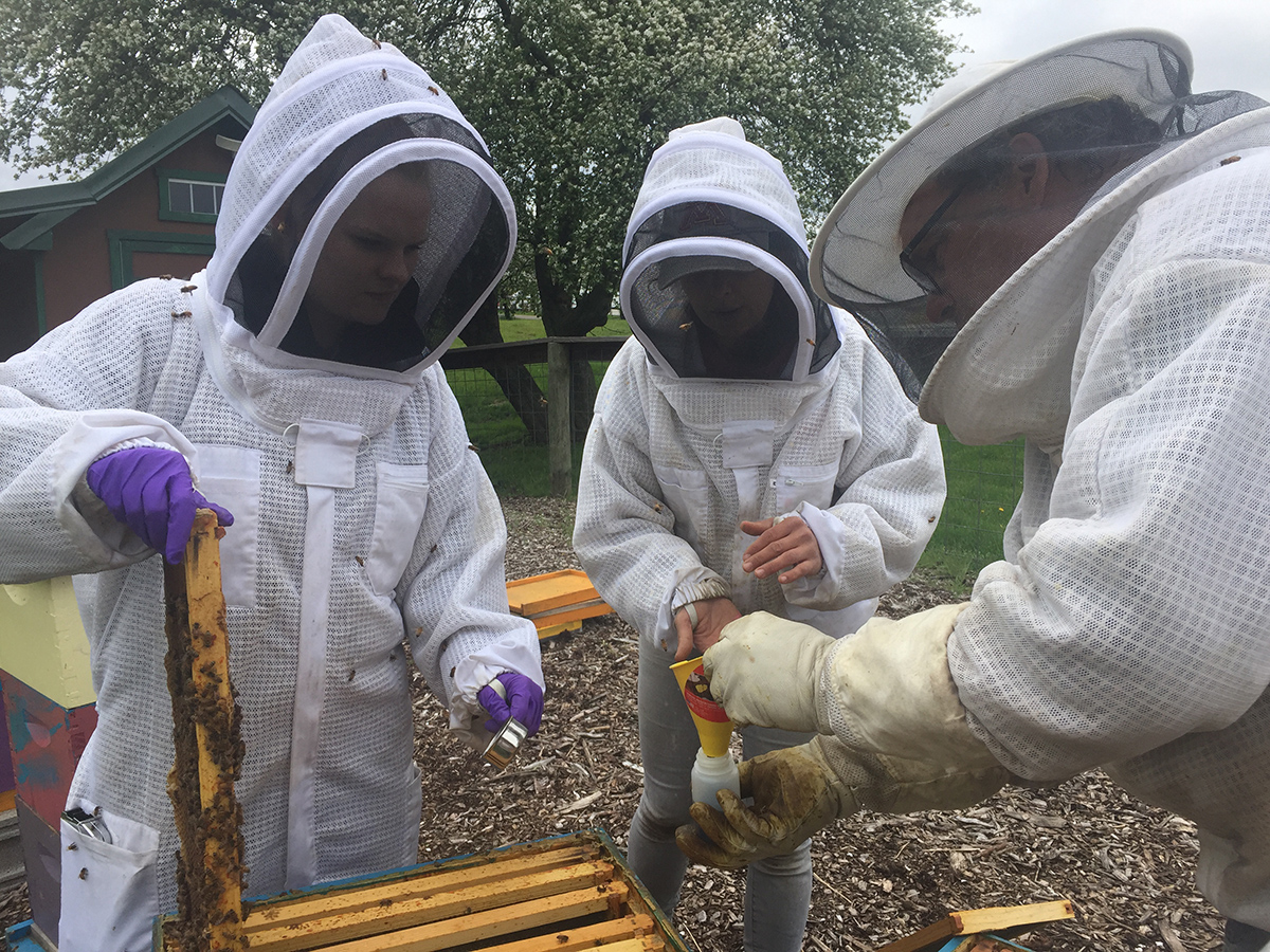 The Michigan Pollinator Initiative supports beekeeping around the state
