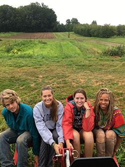Students sitting at the organic farm