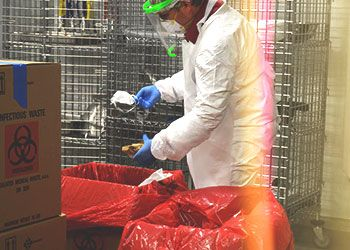 A person in PPE handles contaminated masks ready for decontamination