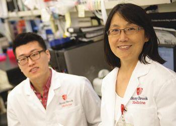 Dr. Ellen Li in a Stony Brook lab setting