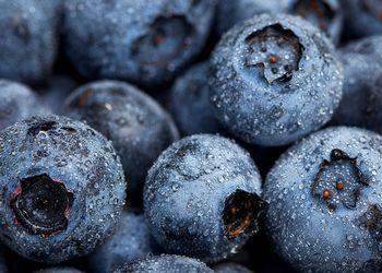 Blueberries macro shot
