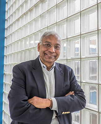 Professor Anil K. Jain
