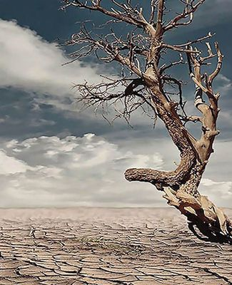 MSU to Study the Effects of Droughts