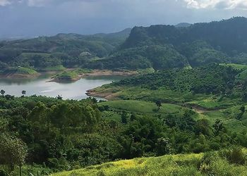 $1M Grant Launches Mekong Sustainability Project