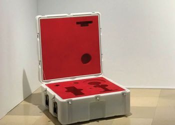 International Art Prize Winner