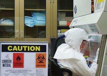 Vet lab scientist processes COVID test.