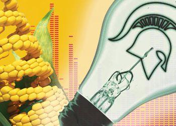 MSU Lightbulb and corn in DNA strand