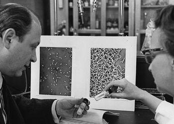 Dr. Rosenberg and Dr. VanCamp
