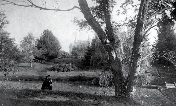 Earliest photo of Beal Garden