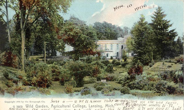 Beal Garden, 1906.