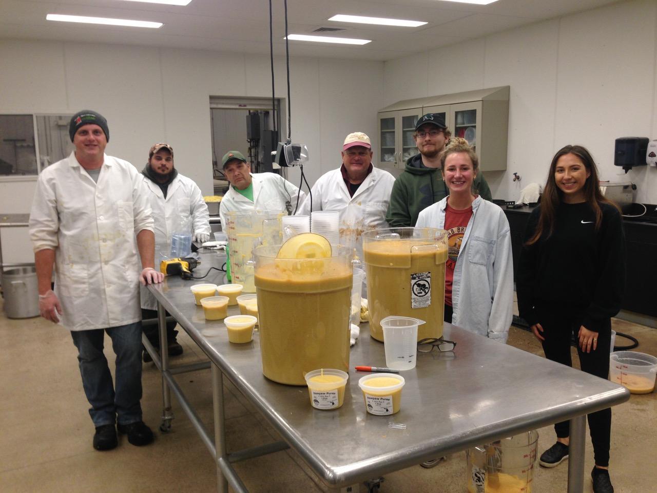 The team surveys their work; pureed Pawpaw fruit.