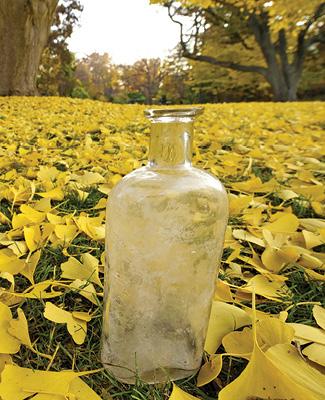 A bottle from Beal's Bottle Experiement.