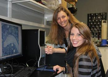 Laura McCabe, director of the MSU Beckman Scholars Program and professor of physiology and radiology, with human biology senior Hayley Bierhalt, who works in McCabe's lab.